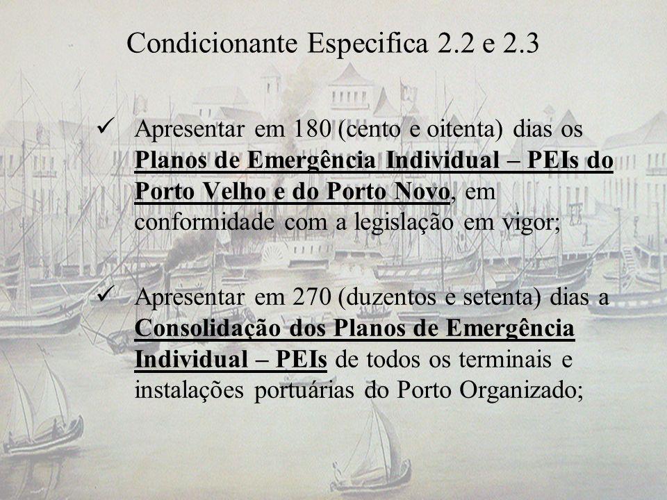 Condicionante Especifica 2.2 e 2.3