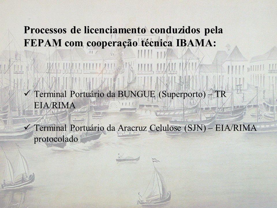 Processos de licenciamento conduzidos pela FEPAM com cooperação técnica IBAMA: