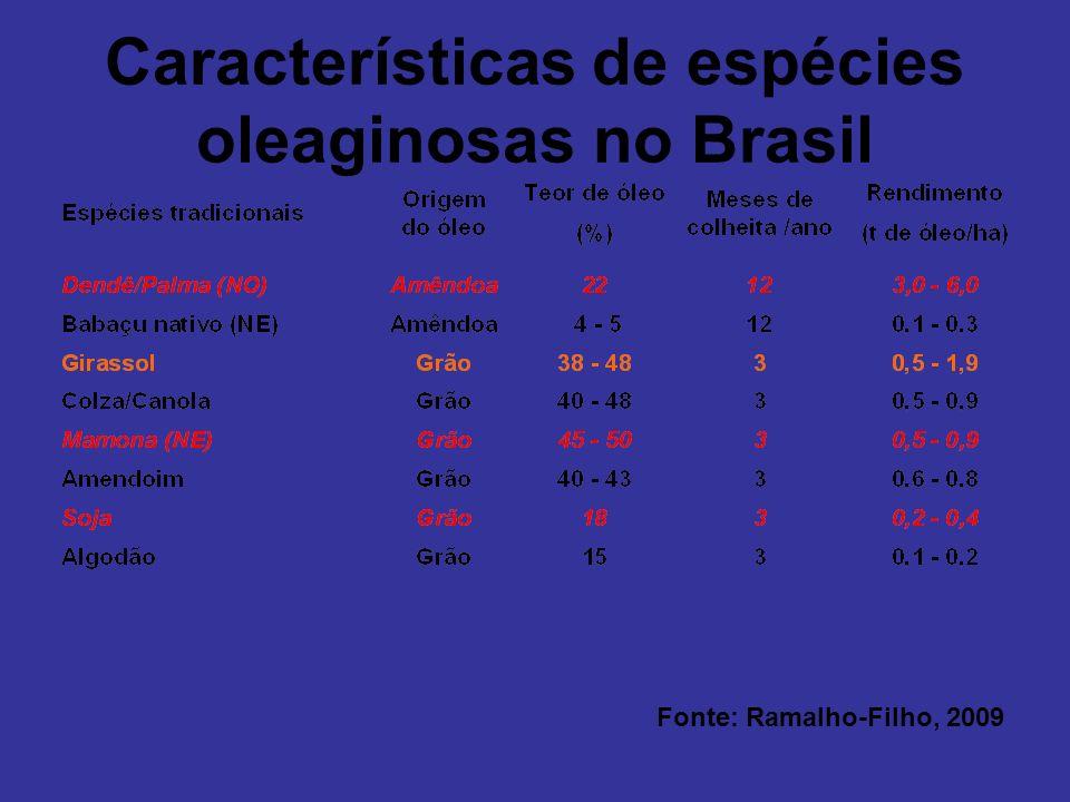 Características de espécies oleaginosas no Brasil