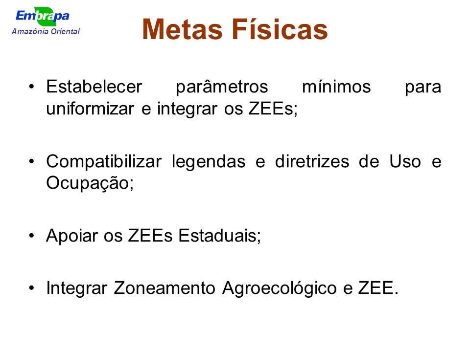 Metas Físicas Amazônia Oriental. Estabelecer parâmetros mínimos para uniformizar e integrar os ZEEs;