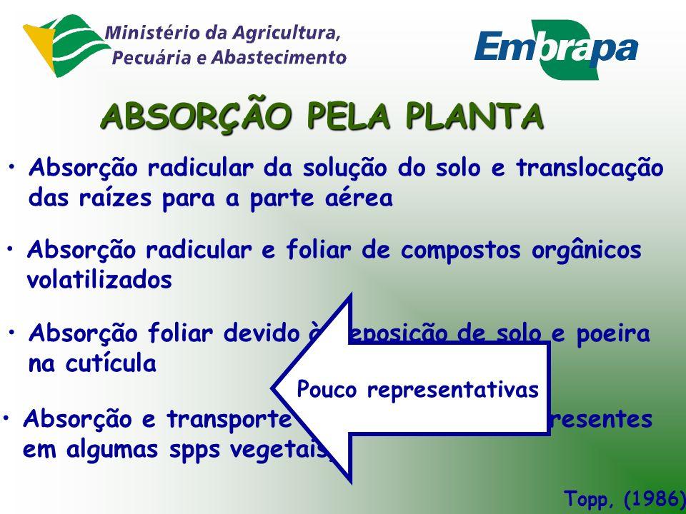 ABSORÇÃO PELA PLANTA Absorção radicular da solução do solo e translocação. das raízes para a parte aérea.