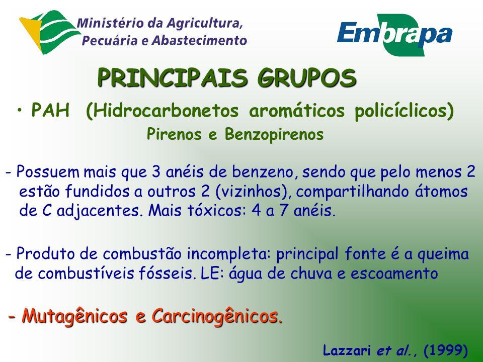 PRINCIPAIS GRUPOS PAH (Hidrocarbonetos aromáticos policíclicos)
