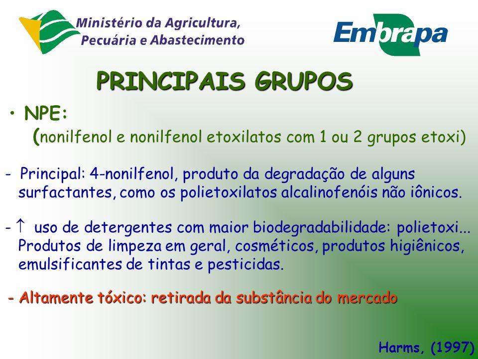 PRINCIPAIS GRUPOS NPE: