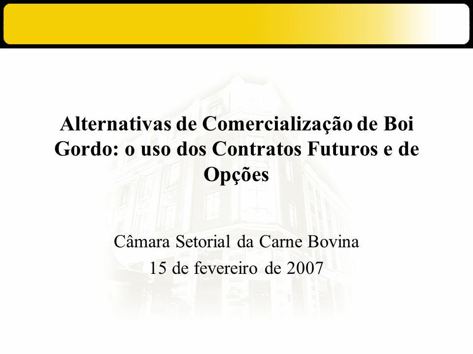 Câmara Setorial da Carne Bovina 15 de fevereiro de 2007