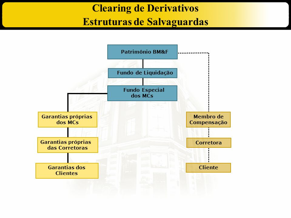 Clearing de Derivativos Estruturas de Salvaguardas