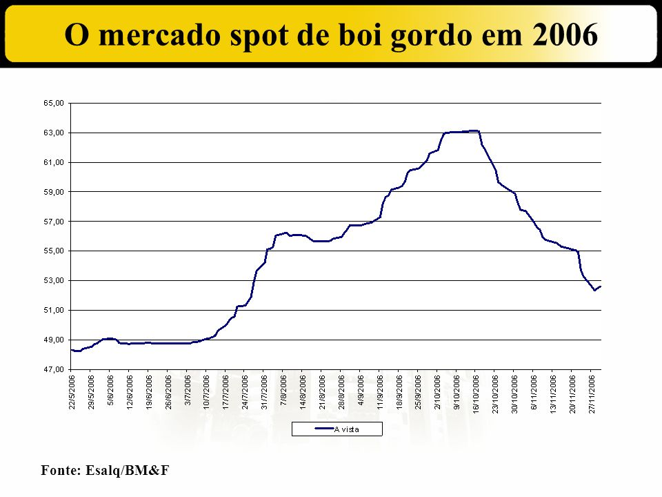 O mercado spot de boi gordo em 2006
