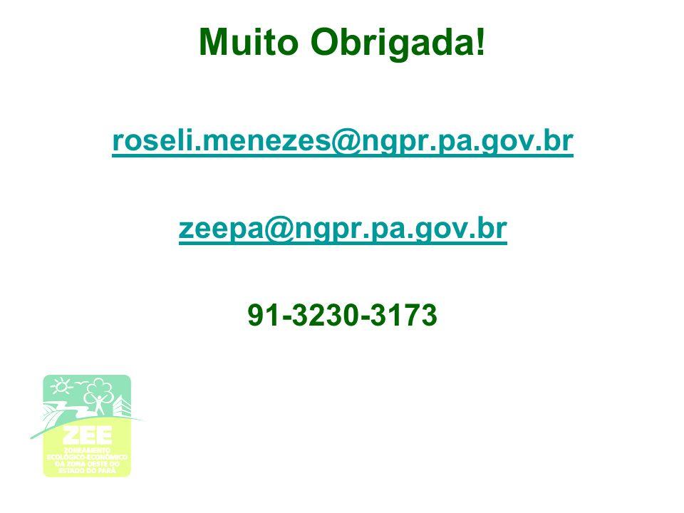 Muito Obrigada! roseli.menezes@ngpr.pa.gov.br zeepa@ngpr.pa.gov.br