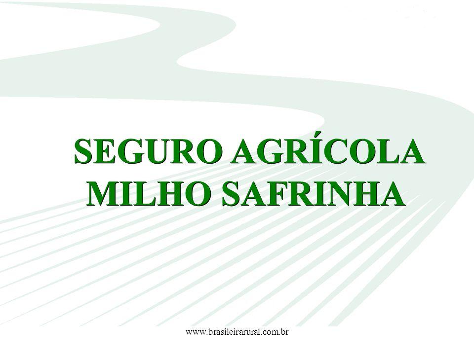 SEGURO AGRÍCOLA MILHO SAFRINHA