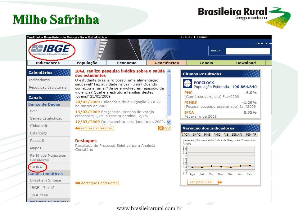 Milho Safrinha www.brasileirarural.com.br www.brasileirarural.com.br