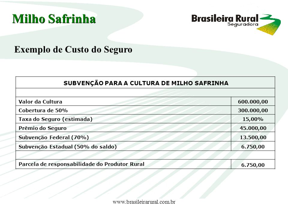 SUBVENÇÃO PARA A CULTURA DE MILHO SAFRINHA
