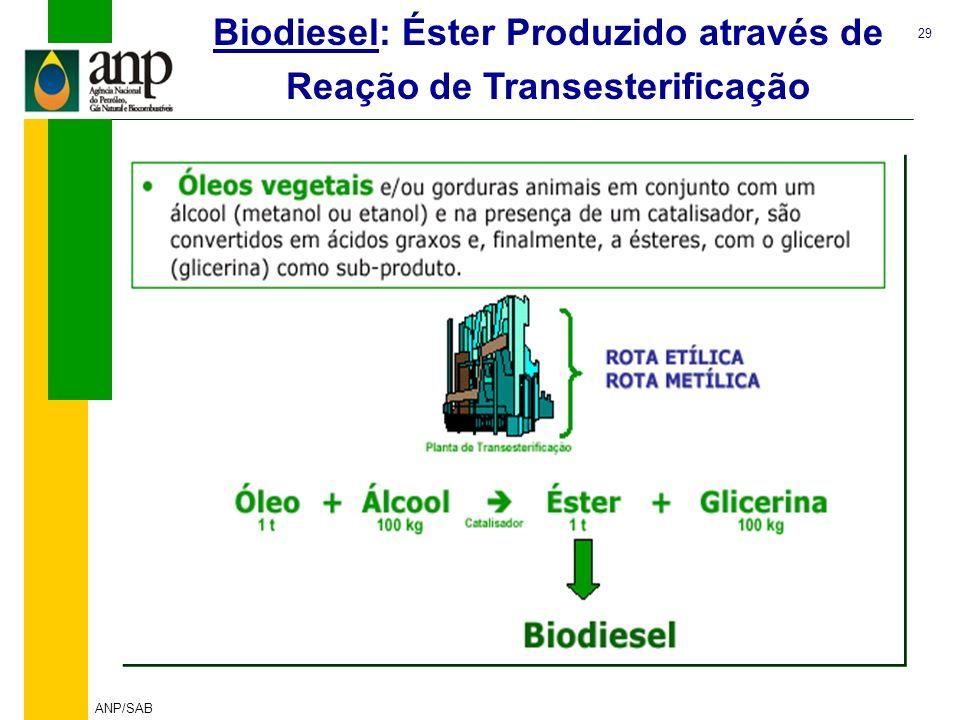 Biodiesel: Éster Produzido através de Reação de Transesterificação