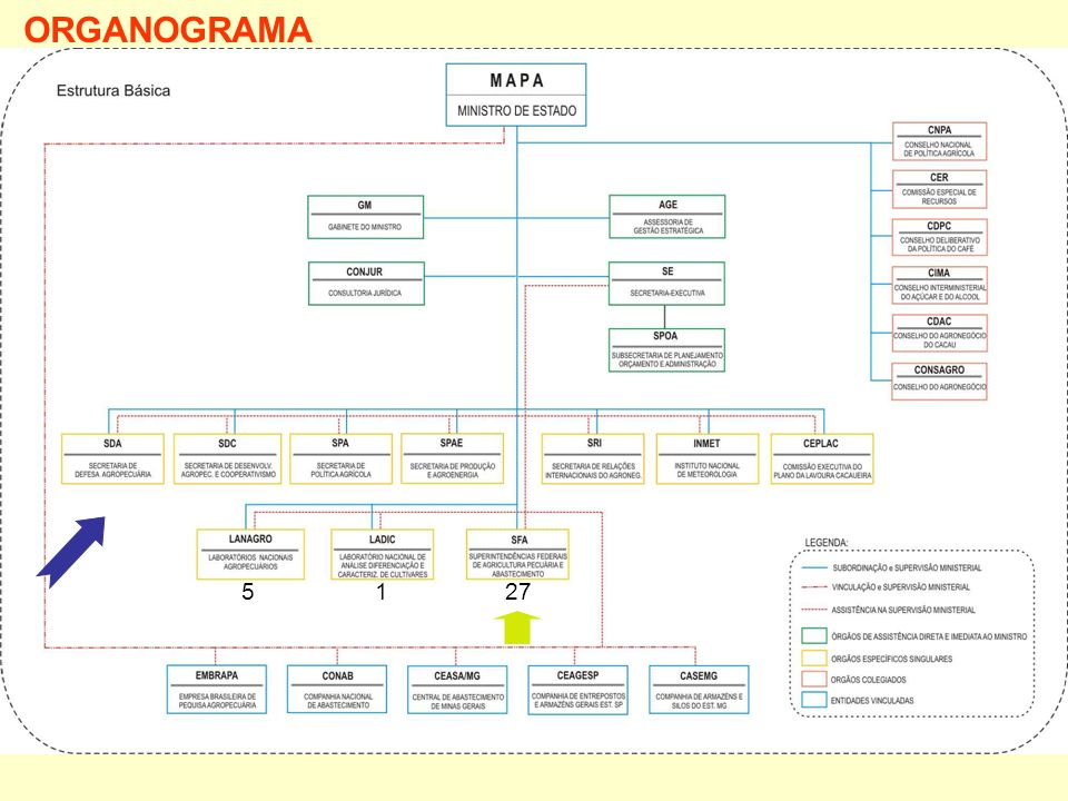 ORGANOGRAMA 5 1 27