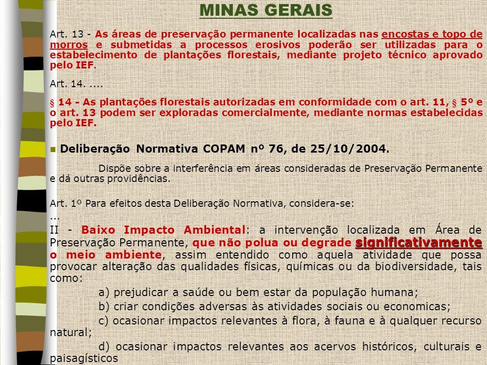MINAS GERAIS Deliberação Normativa COPAM nº 76, de 25/10/2004.