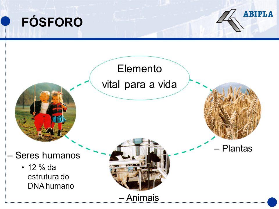 FÓSFORO Elemento vital para a vida Plantas Seres humanos Animais