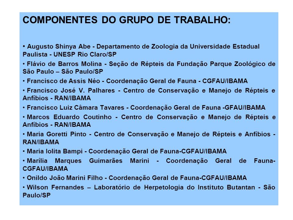 COMPONENTES DO GRUPO DE TRABALHO:
