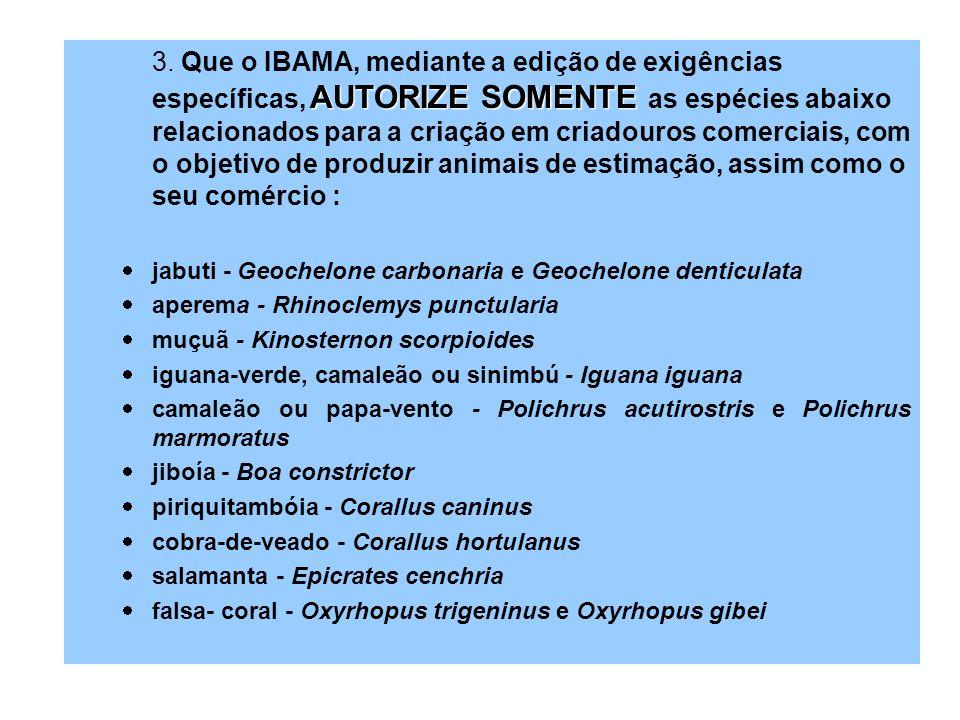 3. Que o IBAMA, mediante a edição de exigências específicas, AUTORIZE SOMENTE as espécies abaixo relacionados para a criação em criadouros comerciais, com o objetivo de produzir animais de estimação, assim como o seu comércio :