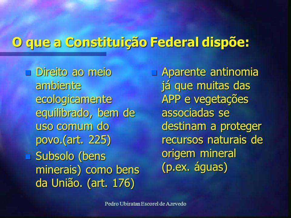 O que a Constituição Federal dispõe: