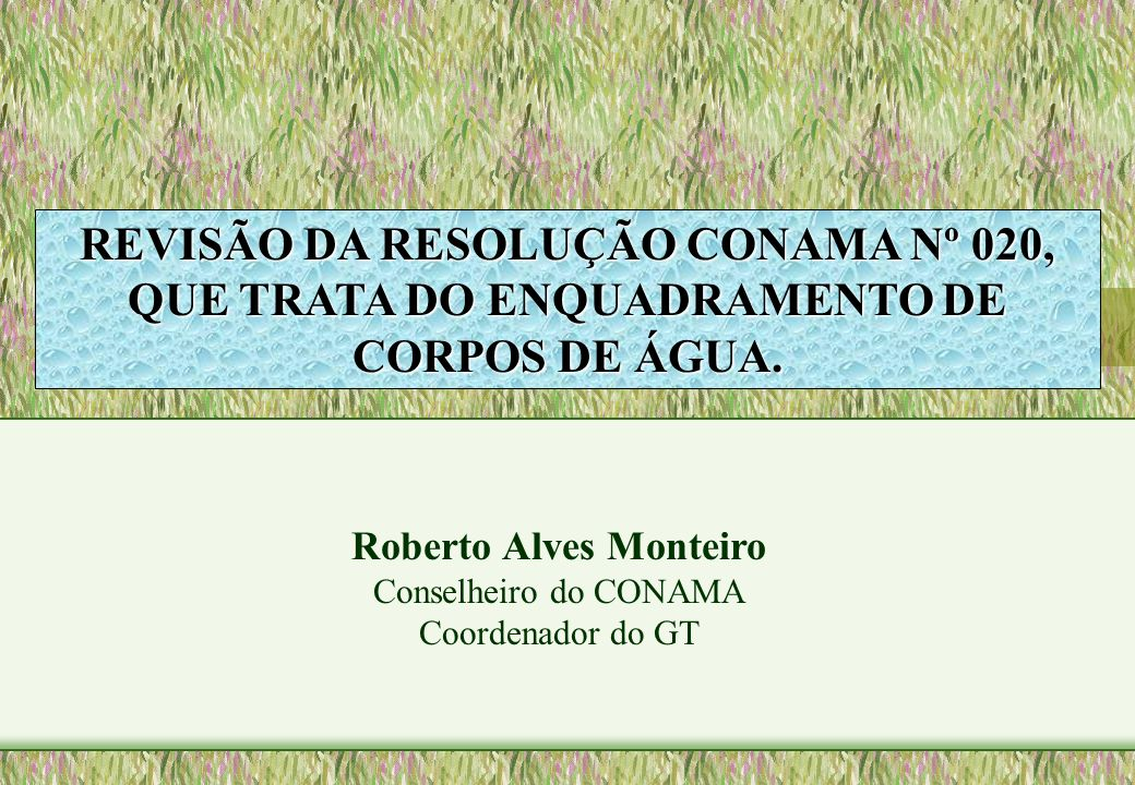 Roberto Alves Monteiro