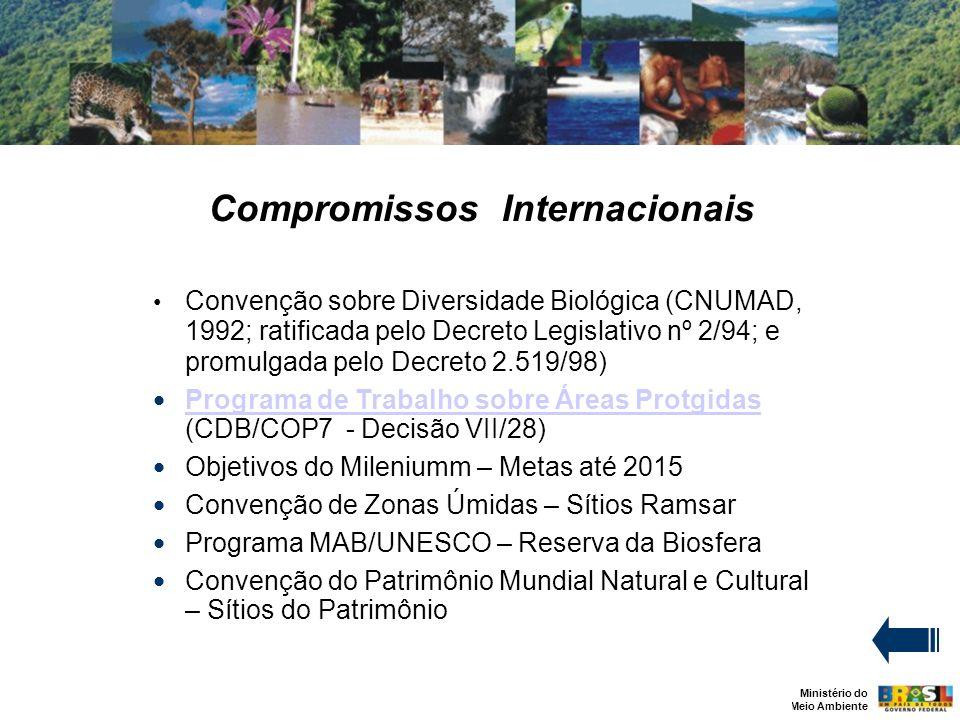 Compromissos Internacionais