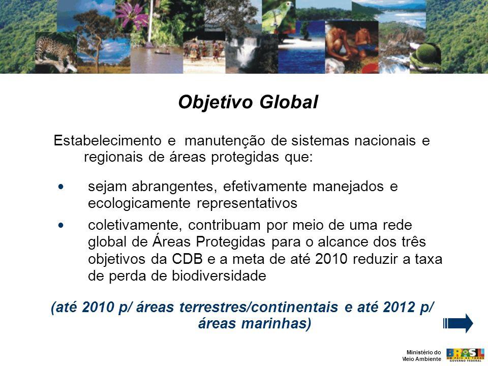 Objetivo Global Estabelecimento e manutenção de sistemas nacionais e regionais de áreas protegidas que: