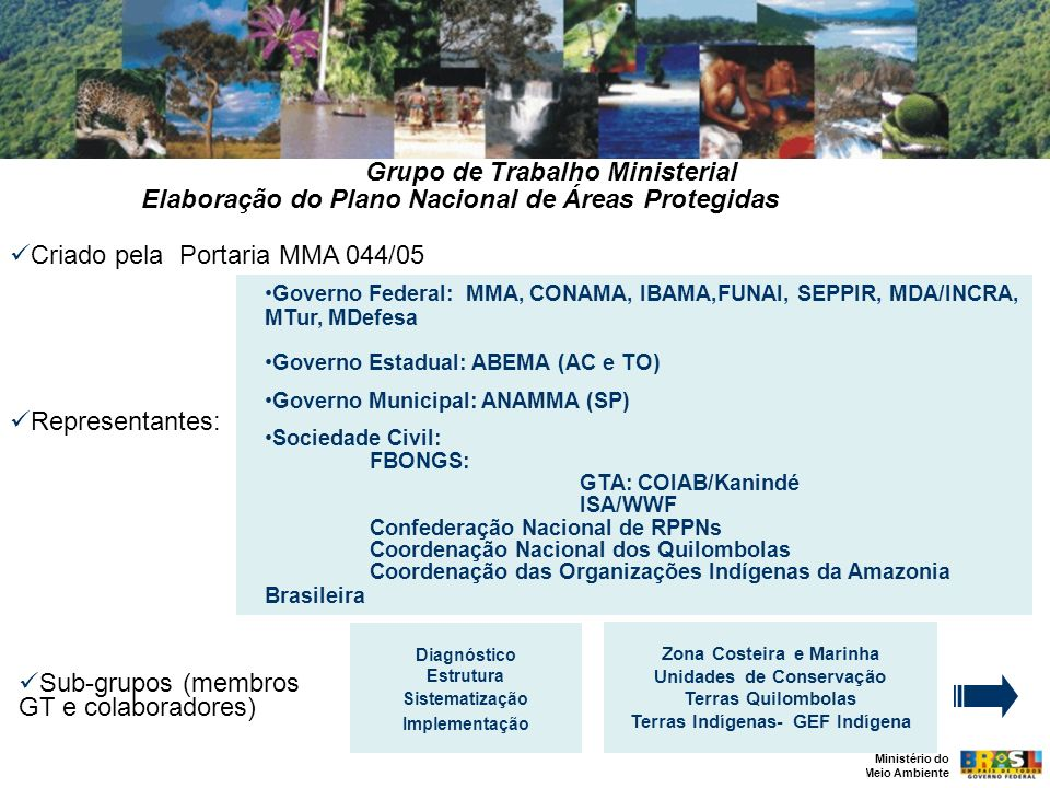 Grupo de Trabalho Ministerial