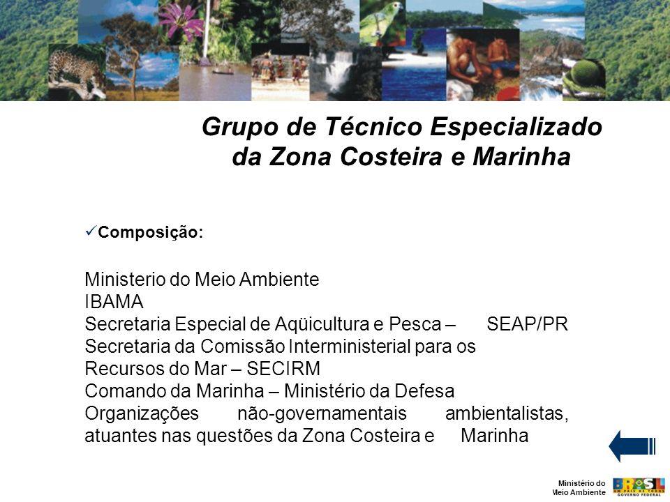 Grupo de Técnico Especializado da Zona Costeira e Marinha