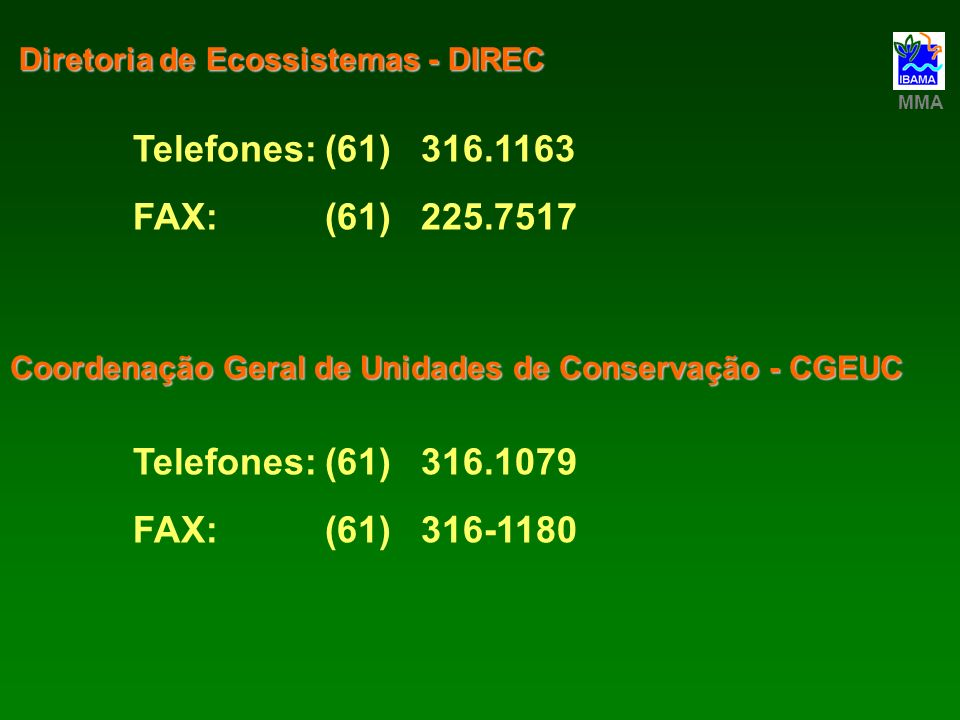 Telefones: (61) 316.1163 FAX: (61) 225.7517 Telefones: (61) 316.1079