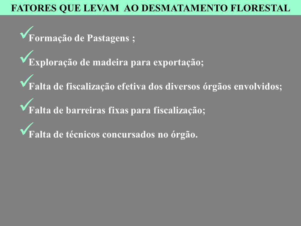 FATORES QUE LEVAM AO DESMATAMENTO FLORESTAL