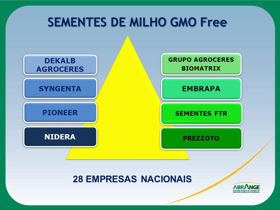 SEMENTES DE MILHO GMO Free