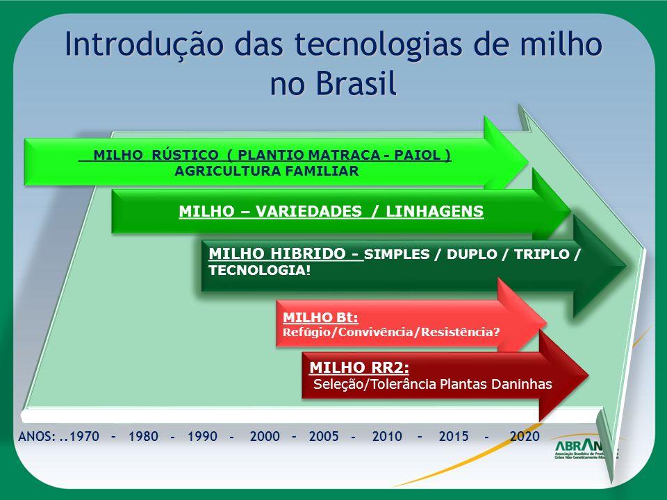 Introdução das tecnologias de milho no Brasil