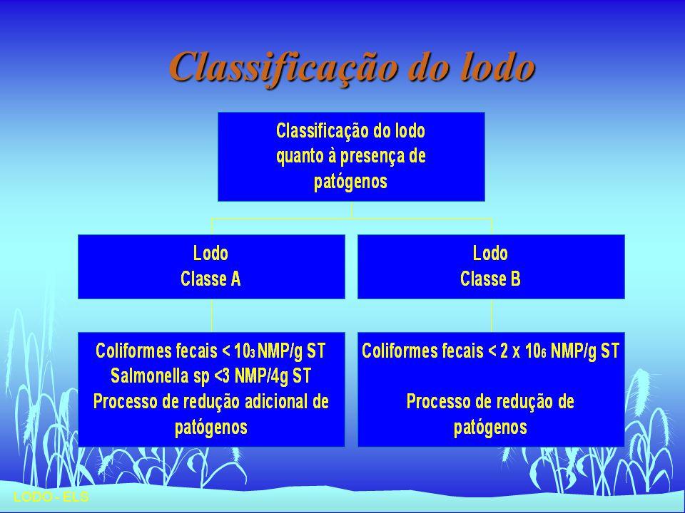 Classificação do lodo