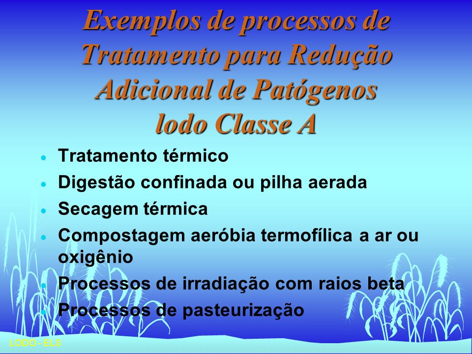 Exemplos de processos de Tratamento para Redução Adicional de Patógenos lodo Classe A