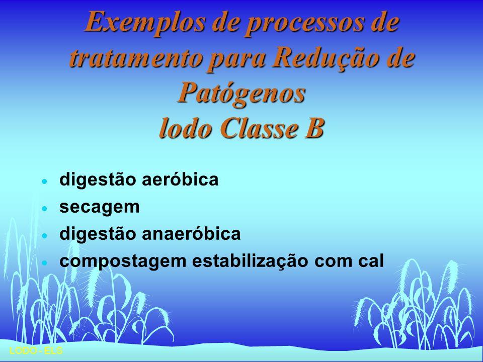 Exemplos de processos de tratamento para Redução de Patógenos lodo Classe B