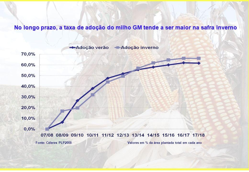 No longo prazo, a taxa de adoção do milho GM tende a ser maior na safra inverno