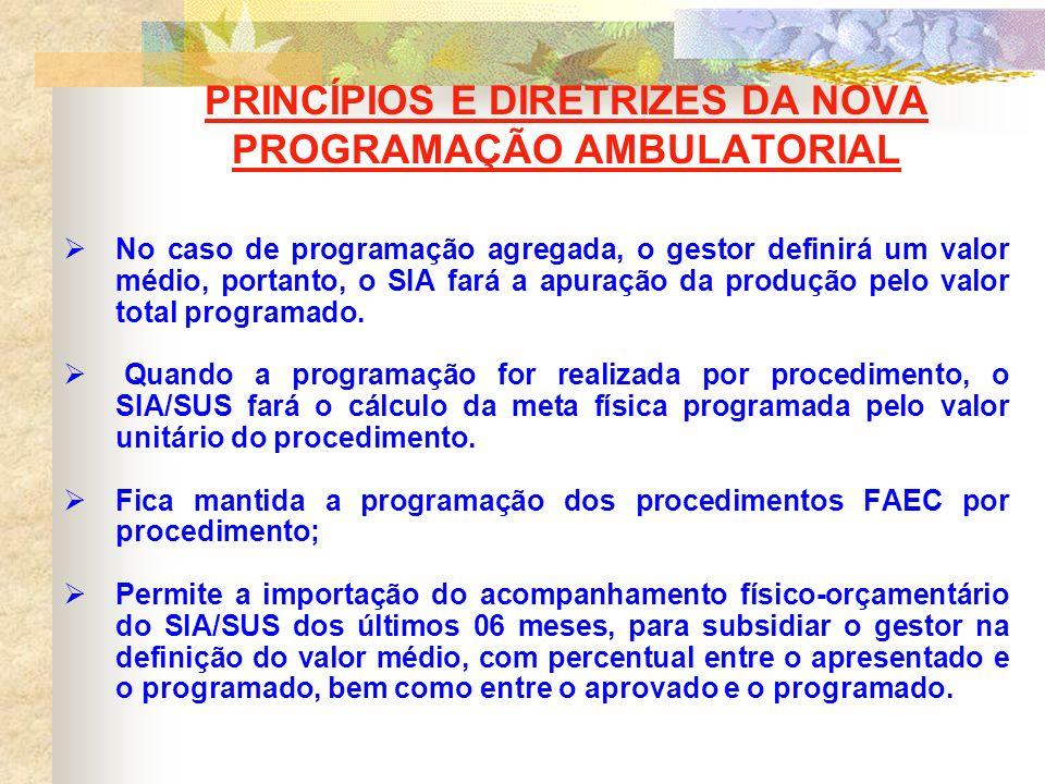 PRINCÍPIOS E DIRETRIZES DA NOVA PROGRAMAÇÃO AMBULATORIAL