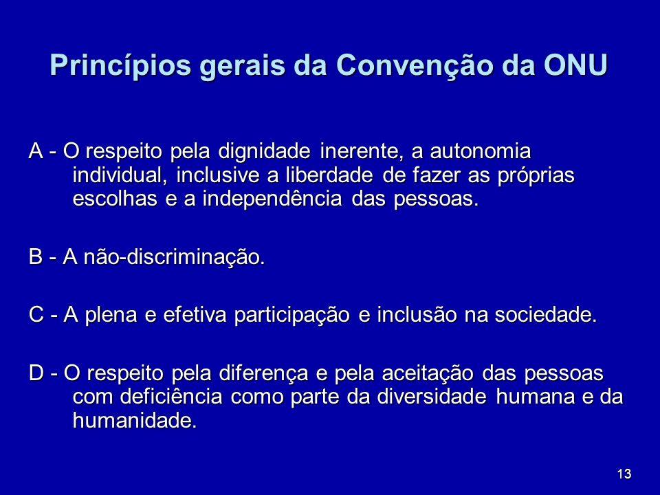 Princípios gerais da Convenção da ONU