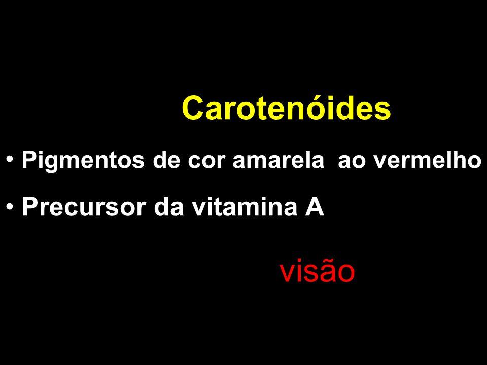 Carotenóides visão Pigmentos de cor amarela ao vermelho