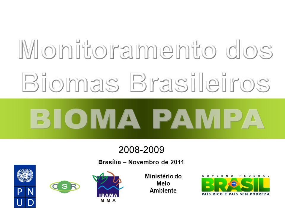 Monitoramento dos Biomas Brasileiros Ministério do Meio Ambiente