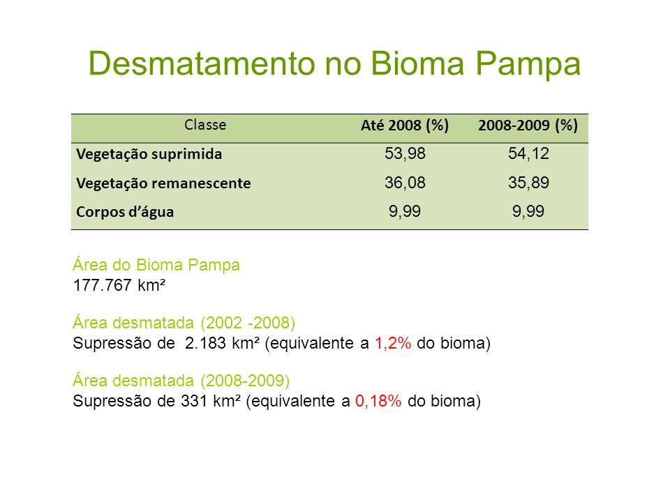 Desmatamento no Bioma Pampa