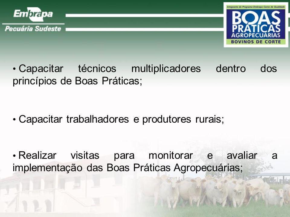 Capacitar técnicos multiplicadores dentro dos princípios de Boas Práticas;