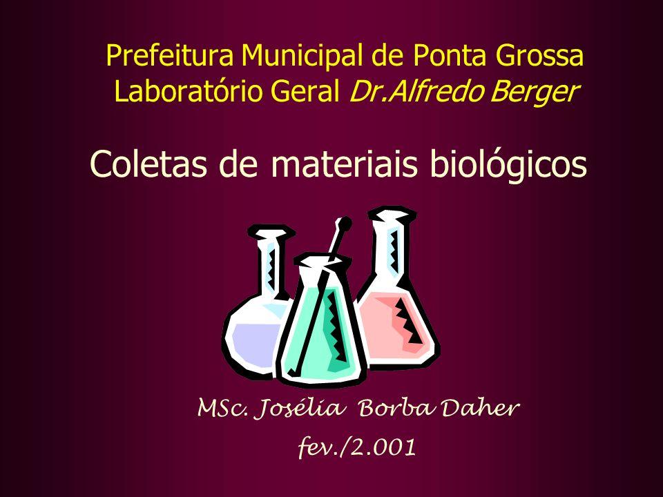MSc. Josélia Borba Daher