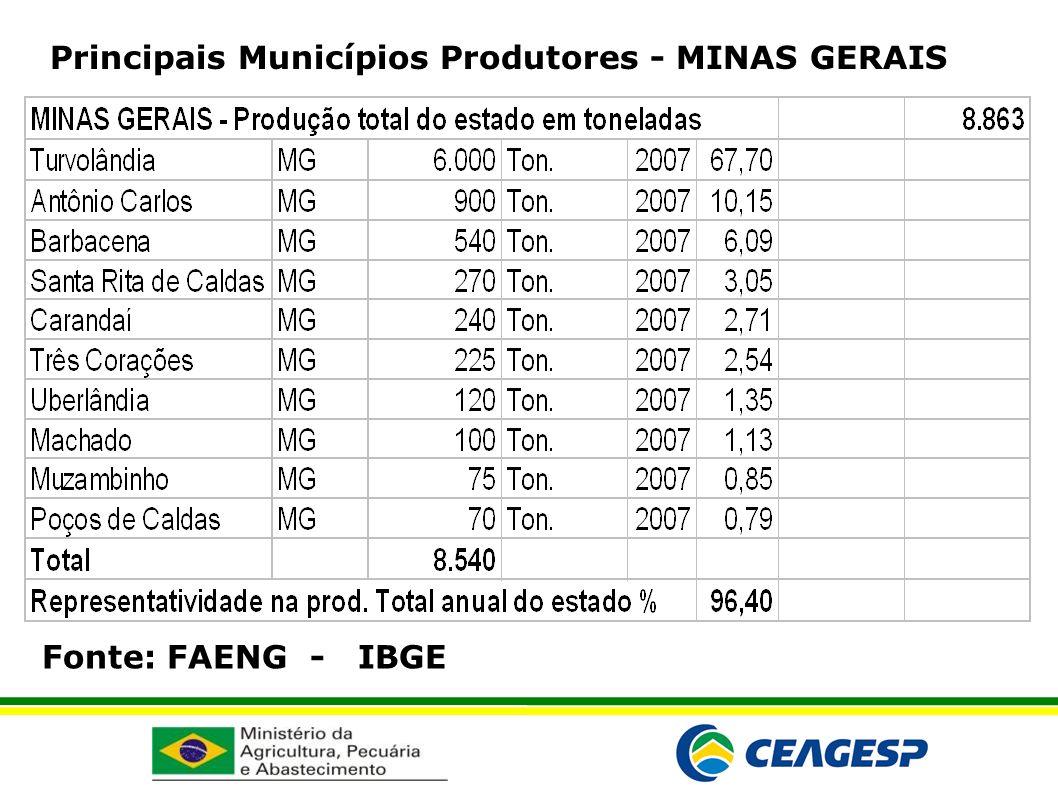 Principais Municípios Produtores - MINAS GERAIS