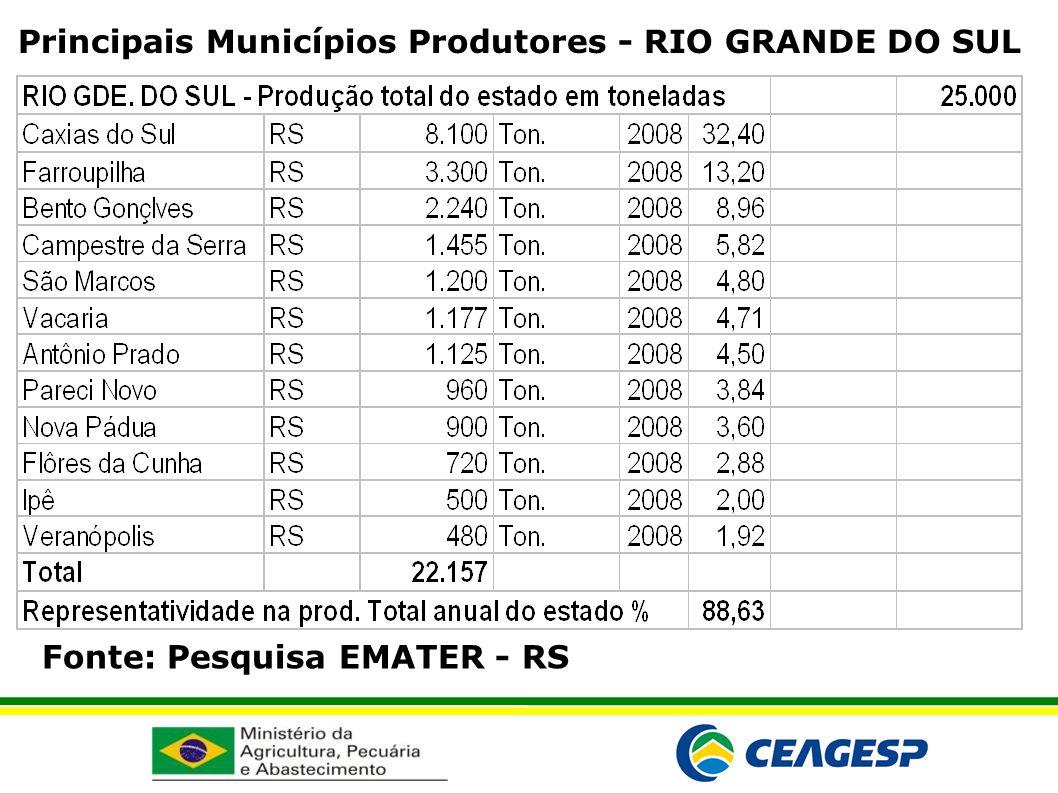 Principais Municípios Produtores - RIO GRANDE DO SUL