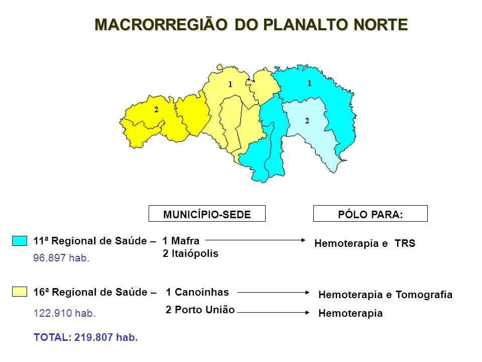 MACRORREGIÃO DO PLANALTO NORTE