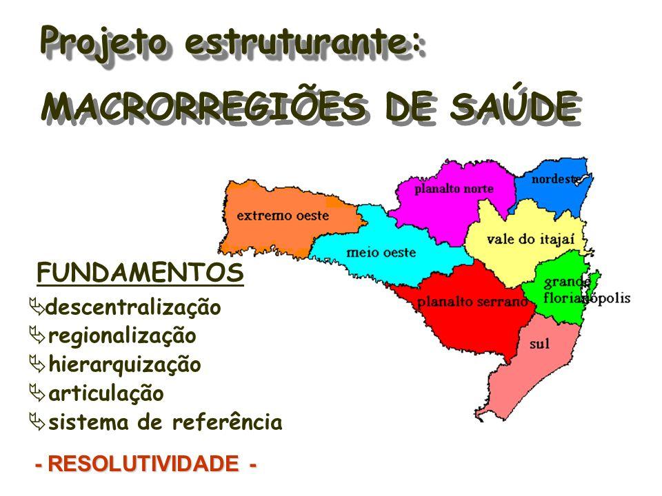 Projeto estruturante: MACRORREGIÕES DE SAÚDE