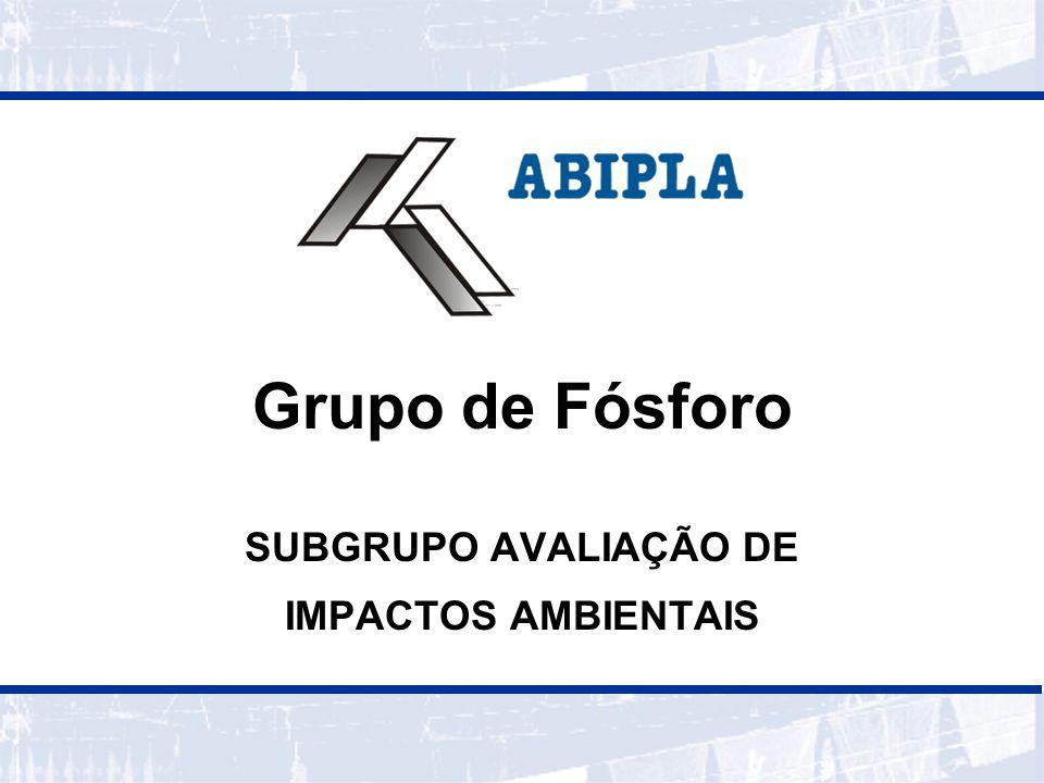 SUBGRUPO AVALIAÇÃO DE IMPACTOS AMBIENTAIS