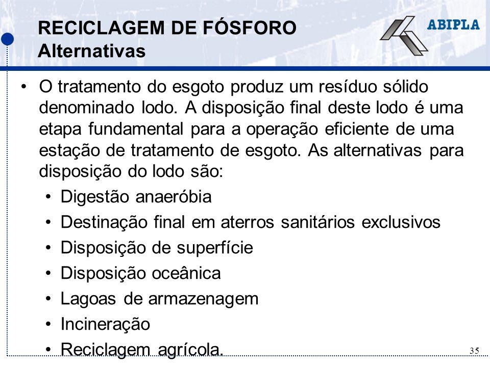 RECICLAGEM DE FÓSFORO Alternativas
