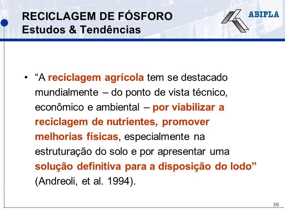 RECICLAGEM DE FÓSFORO Estudos & Tendências