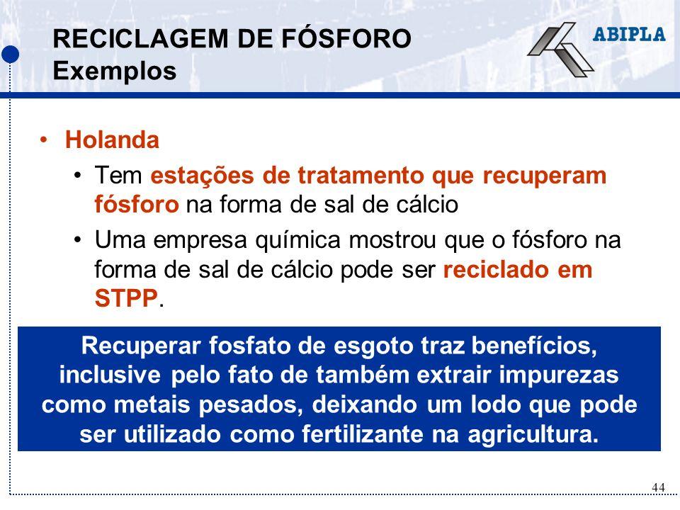 RECICLAGEM DE FÓSFORO Exemplos