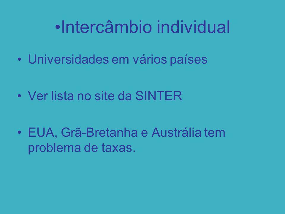 Intercâmbio individual